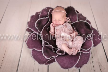 Babyfotograf - Melanie Melcher-73