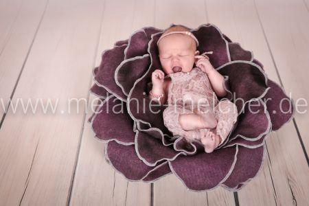 Babyfotograf - Melanie Melcher-74