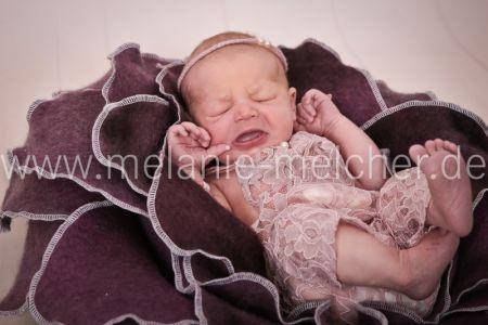 Babyfotograf - Melanie Melcher-75