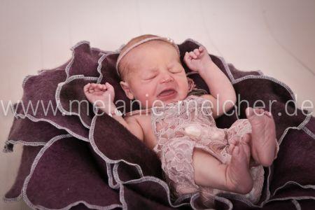 Babyfotograf - Melanie Melcher-76