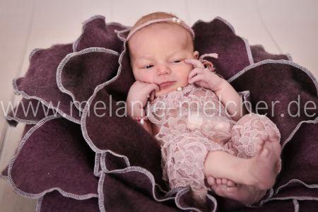 Babyfotograf - Melanie Melcher-79