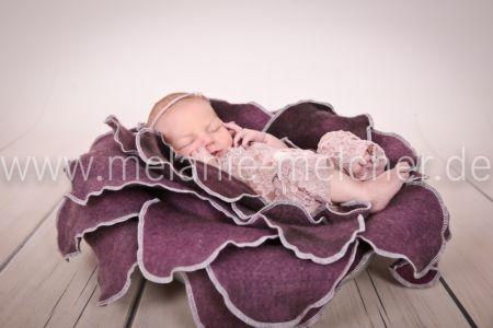 Babyfotograf - Melanie Melcher-80