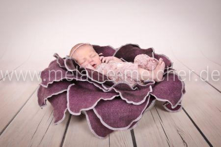 Babyfotograf - Melanie Melcher-81