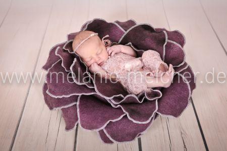 Babyfotograf - Melanie Melcher-82