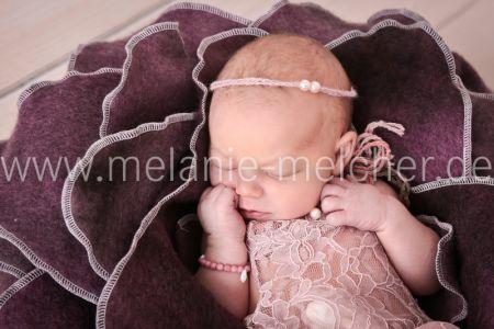 Babyfotograf - Melanie Melcher-84