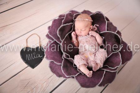 Babyfotograf - Melanie Melcher-85